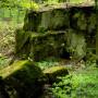 Limestone blocks at The Cedars Preserve. Photo by Kevin J. Smith.