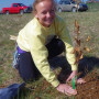 A Salem High School student plants a chestnut tree at their outdoor lab. Photo by Carroll Ritter.