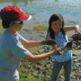 Salem students plants wetland plugs at the outdoor lab 2012__cropped_CR