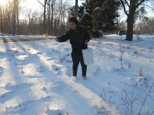 Sowing seeds in winter_by Shane Gibson (5)