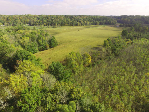 sycamore adds 84 acres to beanblossom bottoms nature preserve