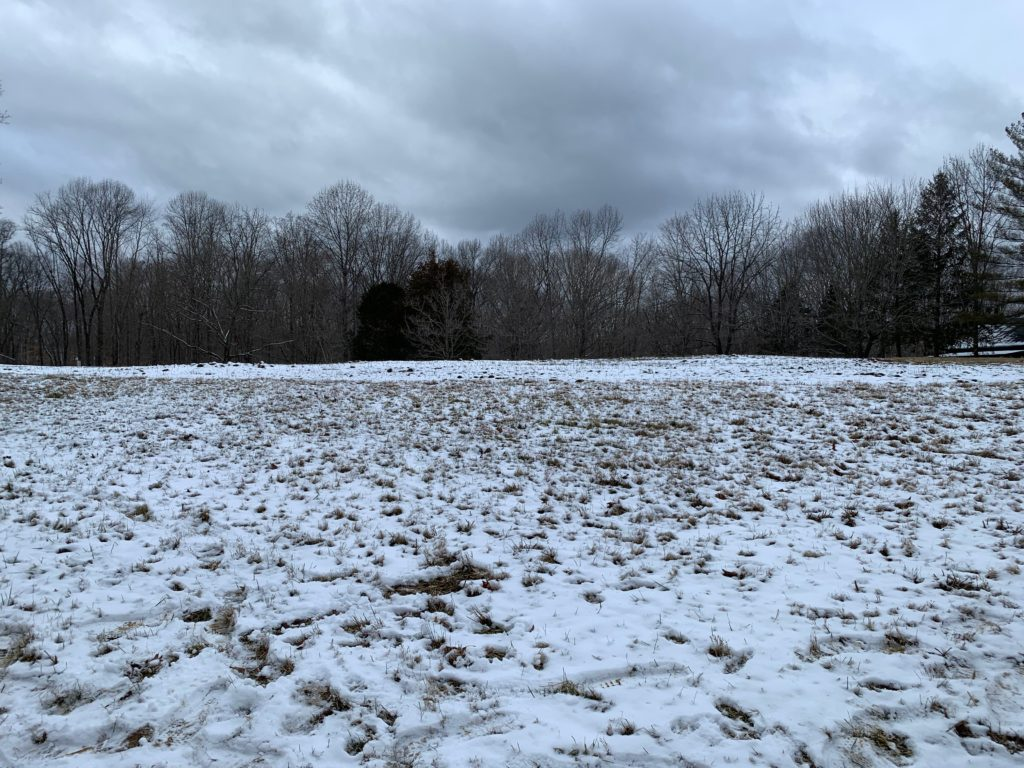 Amy Weingartner Branigin Peninsula Preserve Winter Planting