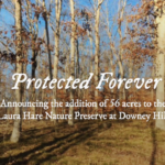 Protected Forever